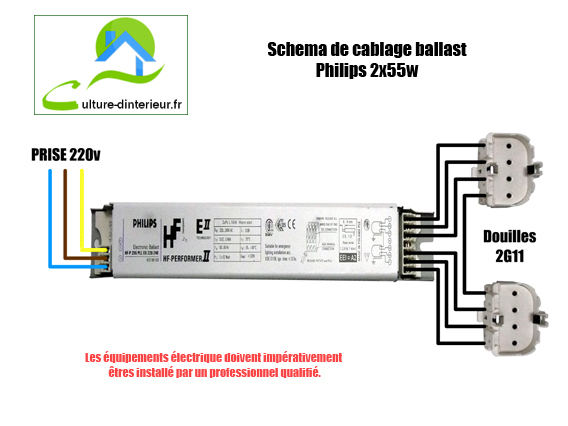 sch ma de cablage ballast philips 2x55w growshop materiel de culture i. Black Bedroom Furniture Sets. Home Design Ideas